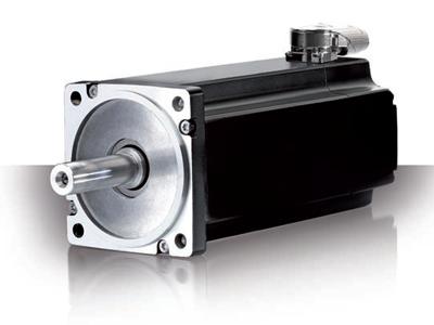 LSP LSM servomotor synkron motor